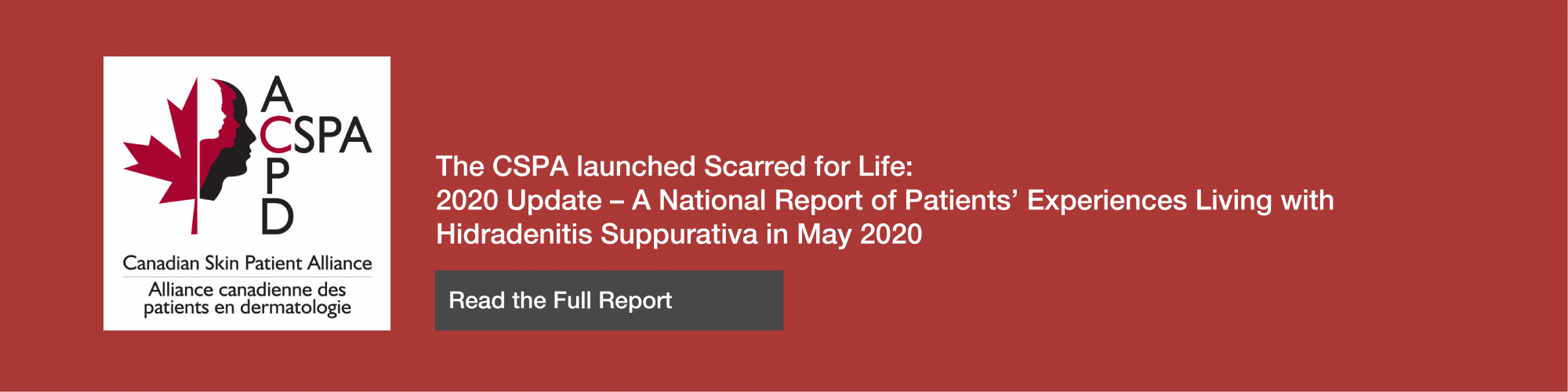 CSPA-National Report-ENG-red2